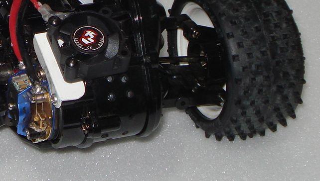 DT-02 - Desert Gator - fake Super Astute DSC08858-zoom