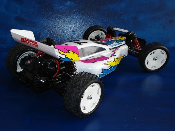 DT-02 - Desert Gator - fake Super Astute DSC08865_1